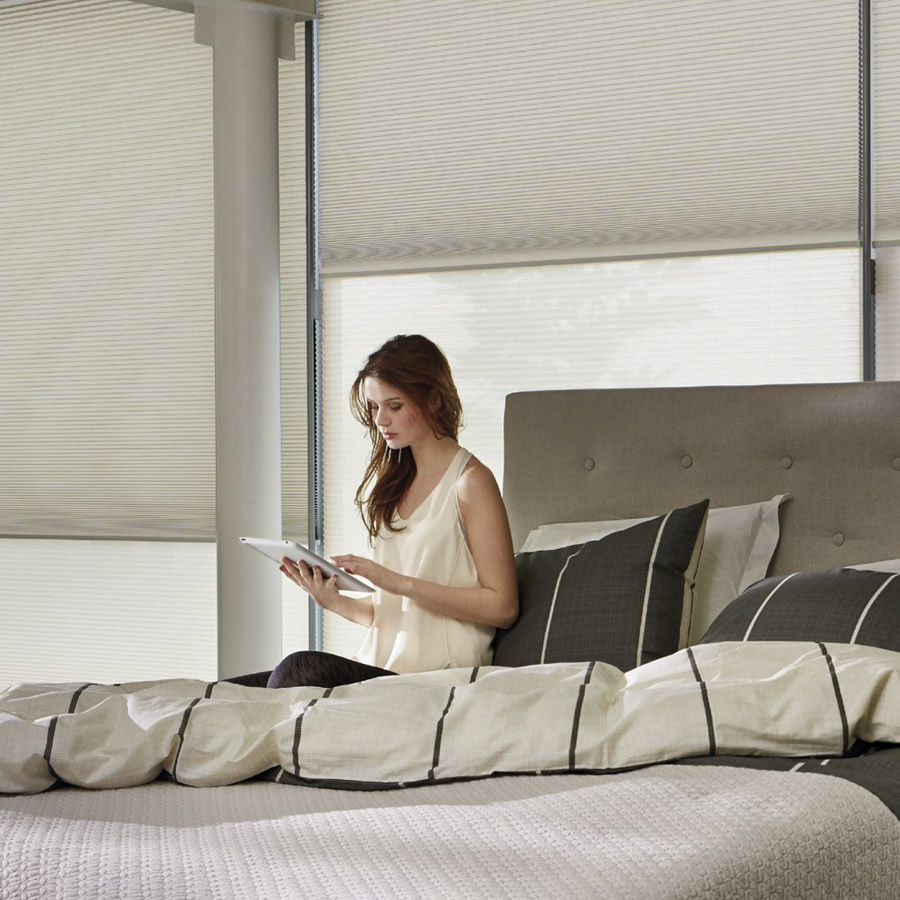 App Controlled Blinds