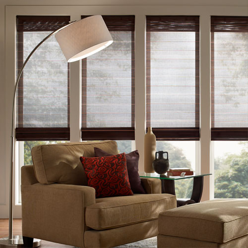 Lutron Roman Blinds