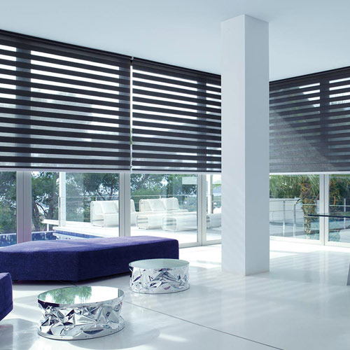 Electric Vision Blinds